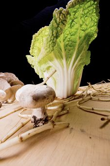 Free Cabbage And Mushroom 4 Stock Image - 7778031