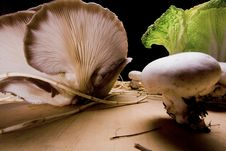 Free Cabbage And Mushroom 5 Stock Photography - 7778032