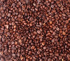 Free Coffee Beans Royalty Free Stock Photo - 7778965