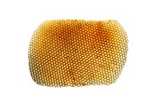 Free Honeycombs Royalty Free Stock Photography - 7779477