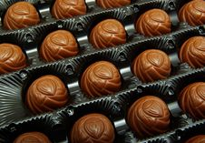 Free Truffles In Box Stock Images - 7779574