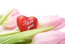Free Valentine Stock Photo - 7779660