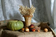 Free Pumpkin And Wheat Stock Photo - 7781390