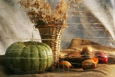 Free Pumpkin And Wheat Royalty Free Stock Image - 7781586