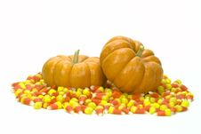 Mini Pumpkins In Candy Corn Royalty Free Stock Photos