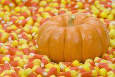 Free Mini Pumpkin In Candy Corn Stock Photos - 7782223