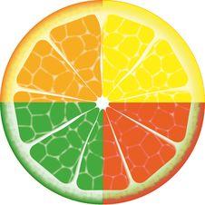 Free Isolated Fruit Stock Photo - 7783090