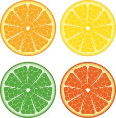 Free 4 Isolated Fruits Stock Images - 7783764