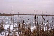 Free Frozen Lake Royalty Free Stock Image - 7788766