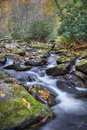 Free Mountain Stream Stock Photos - 7795983