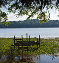 Free Broken Dock By Rivers Side Stock Photography - 7797822