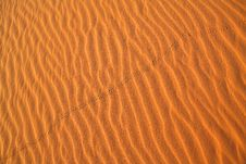 Free Sahara Desert Background Royalty Free Stock Photo - 7790905