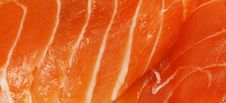 Free Salmon Stock Image - 7792661