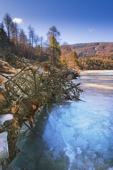 Ice Lake And Forests Royalty Free Stock Images