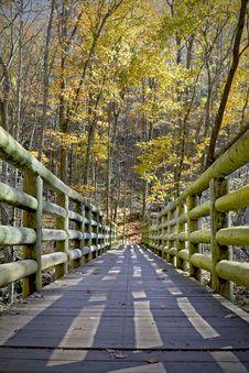 Free Autumn Bridge Royalty Free Stock Image - 7794736
