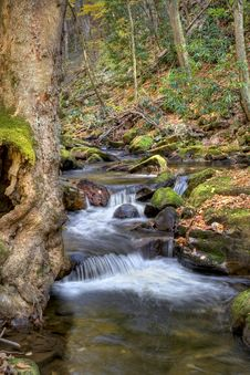 Free Autumn Waterfall Stock Photo - 7794970