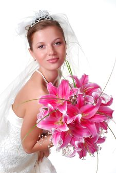 Free Young Bride Stock Photo - 7797600