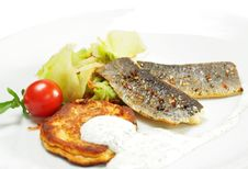 Smoked Fish Fillet With Cabbage Salad Royalty Free Stock Photography