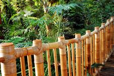 Free Bamboo Fence Stock Images - 7799354