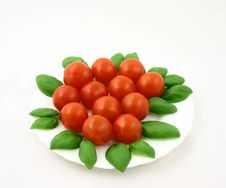 Free Tomatoes With Basil Royalty Free Stock Photo - 783795