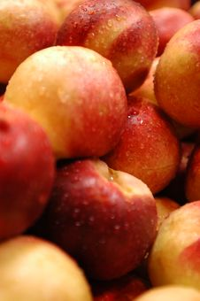 Free Juicy Plums Stock Photo - 784980