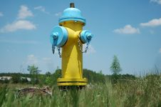 Free Fireplug Stock Images - 786354