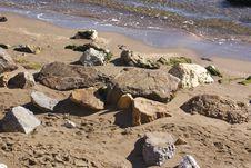 Free Rocks On The Beach Royalty Free Stock Photo - 786455