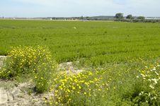 Free Farming Stock Photography - 788472