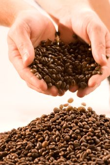 Free Coffee Royalty Free Stock Image - 7801506