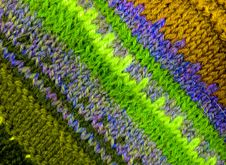 Free Woolen Texture From The Threads Of Many Colors. Stock Photos - 7801943