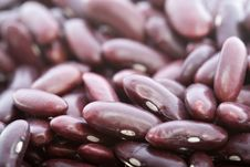 Free Beans Royalty Free Stock Image - 7803636