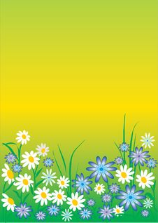 Free Spring Flowers Background Royalty Free Stock Photo - 7804715