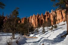 Free Bryce Canyon Stock Photography - 7806322