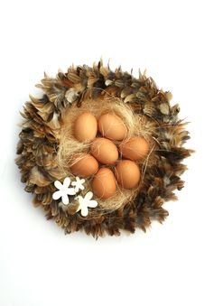 Free Easter Nest Stock Images - 7806534