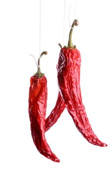 Free Dried Dhili Peppers Royalty Free Stock Images - 7806889