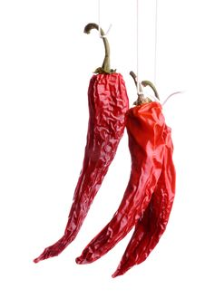 Free Dried Dhili Peppers Stock Image - 7806891