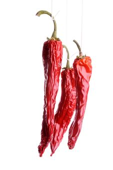 Free Dried Dhili Peppers Royalty Free Stock Image - 7806896