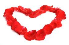 Free Rose Petal Heart Stock Photos - 7806903