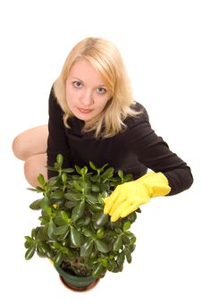 Free Young Woman Looking After A Plant Stock Images - 7807294