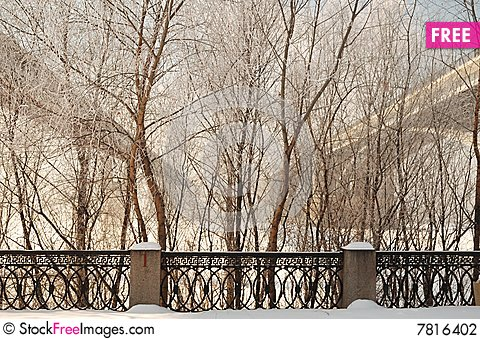 Free View Through The Trees On Two Bridges Stock Photography - 7816402