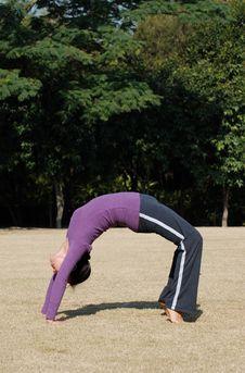 Free Yoga Stock Photo - 7810010