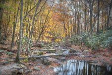 Free Mountain Stream Stock Images - 7811934