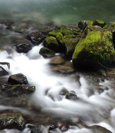 Free Jungle Stream Royalty Free Stock Photo - 7813025