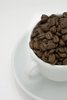 Free Coffee Bean In A Cup Stock Photo - 7817510