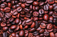 Free Coffee Beans Stock Photography - 7817552