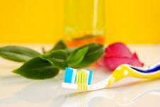 Free Dental Care Stock Photo - 7818040