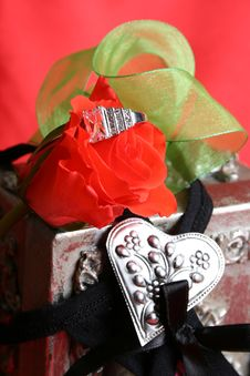 Free Valentine Proposal Stock Photography - 7819012