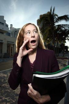 Free Businesswoman In Shock Stock Photos - 7819013