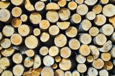 Free Wood Stock Image - 7819251
