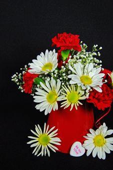 Free February Flowers Stock Image - 7819551